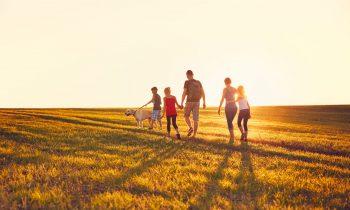 aile-olmak